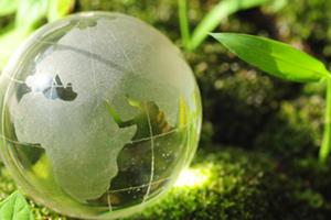 Earthy Globe