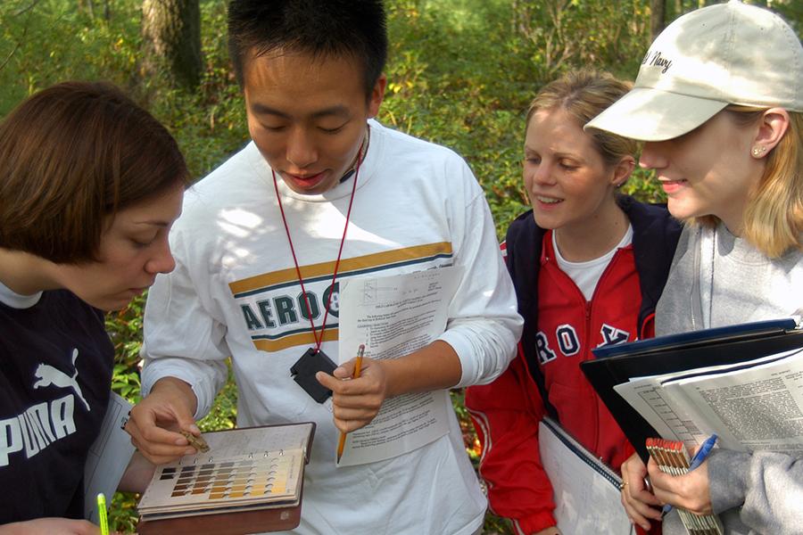 Determining MUSYM soil