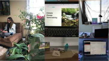 remote learning collage