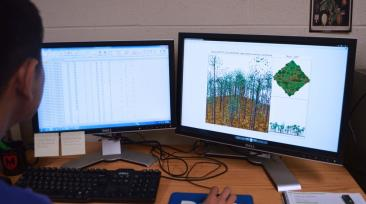 Using the FVS to model forests