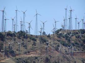Tehacapi wind farm