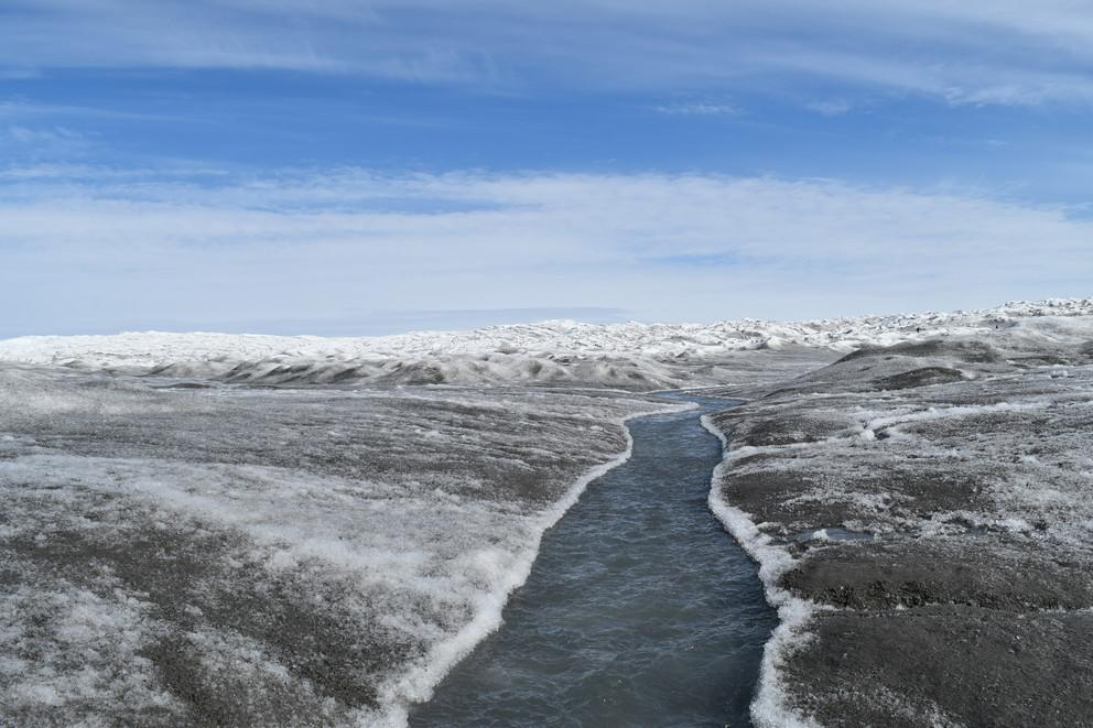 glacial algea