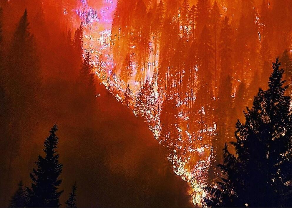The River Complex fires burn in Klamath National Forest. Image: Reid Barney / United States Forest Service